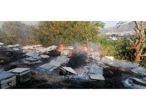 Samandağ'daki Yangın Sigara İzmaritten Çıkmış