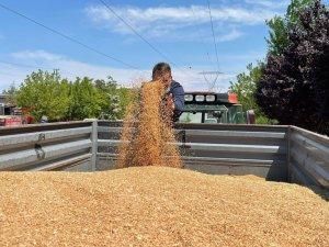 Polatlı'da İlk Hasat Buğday Satıldı