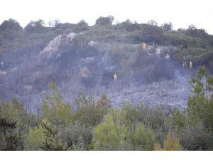 Bucak'taki orman yangını kontrol altına alındı