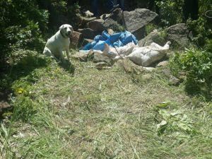 Bitlis'te 2 ton amonyum nitrat imha edildi