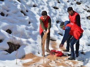 Gençlik Liderleri, Yaban Hayvanları İçin Doğaya Yem Bıraktı