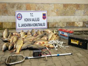 Elektroşokla Balık Avına 32 Bin Lira Ceza