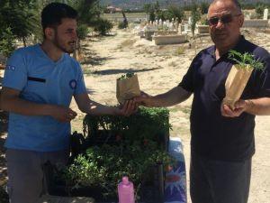Büyükşehir Mezarlıklarda Fidan Dağıttı