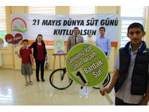 Süt üretiminde dünyada ilk 10'da olan Türkiye tüketiminde AB ülkelerinin gerisinde