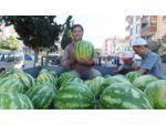 Burhaniye'de yerli karpuz çıktı