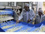 """Başkan Konuk: """"Bir Tesis Yapıldı, Konya Şeker Patates Üretimini 10 Yılda 3'e Katladı"""""""