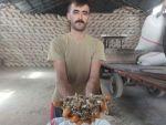 Türkiye'nin Önemli Haşhaş Üretim Merkezlerinde Afyonkarahisar'da 'Haşhaş Kapsülü' Alımı Başladı