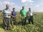 Toprağın Altında Da Üstünde De Milli Servete Dönüştü