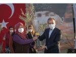 Mersin Büyükşehir Belediyesi, Üreticiye 60 Bin Zeytin Fidanı Dağıtacak