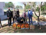 Kozan'ın Yöresel Ürünleri 'E- Ticaret' İle Yurdun Dört Bin Yanına Gidiyor