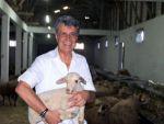 BTSO Eski Meclis başkanı hayvancılık sektörüne girdi