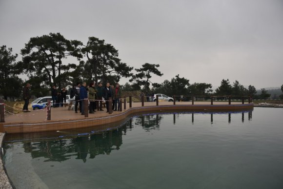 'Ortaköy Biyolojik Gölet' Projesinde Sona Doğru