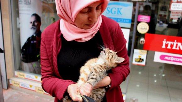 Elini Kanlar İçinde Bıraktı Ama O, Kediyi Bırakmadı