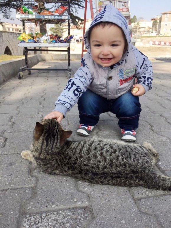 Kediyle Simidini Paylaşan Çocuğun Sevimli Halleri Kameraya Yansıdı