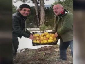 Antalyada yaban hayatı kış yemlemesi