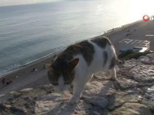 Antalya'da önce sel felaketi, ardından güneş keyfi